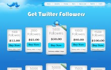howtotwitterfollowers